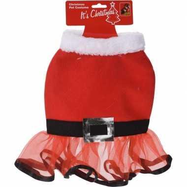 Kerstjurk voor de hond 30 cm